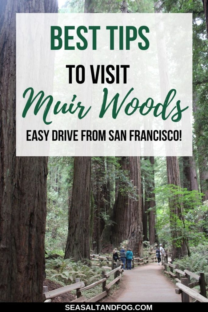 Best Tips to Visit Muir Woods - Easy Drive from San Francisco text over picture of Muir Woods trees