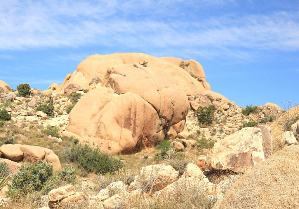 large rock formation shaped like an elephant in the desert surrounded by rocks and shrubs