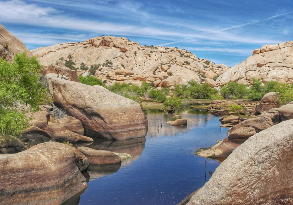 Water surrounded by large desert boulders at Joshua Tree