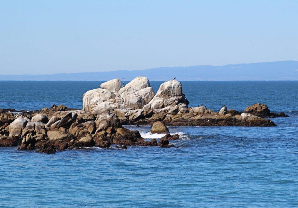Rocks along in the ocean