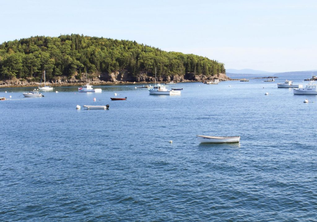 Boats in Bar Harbor