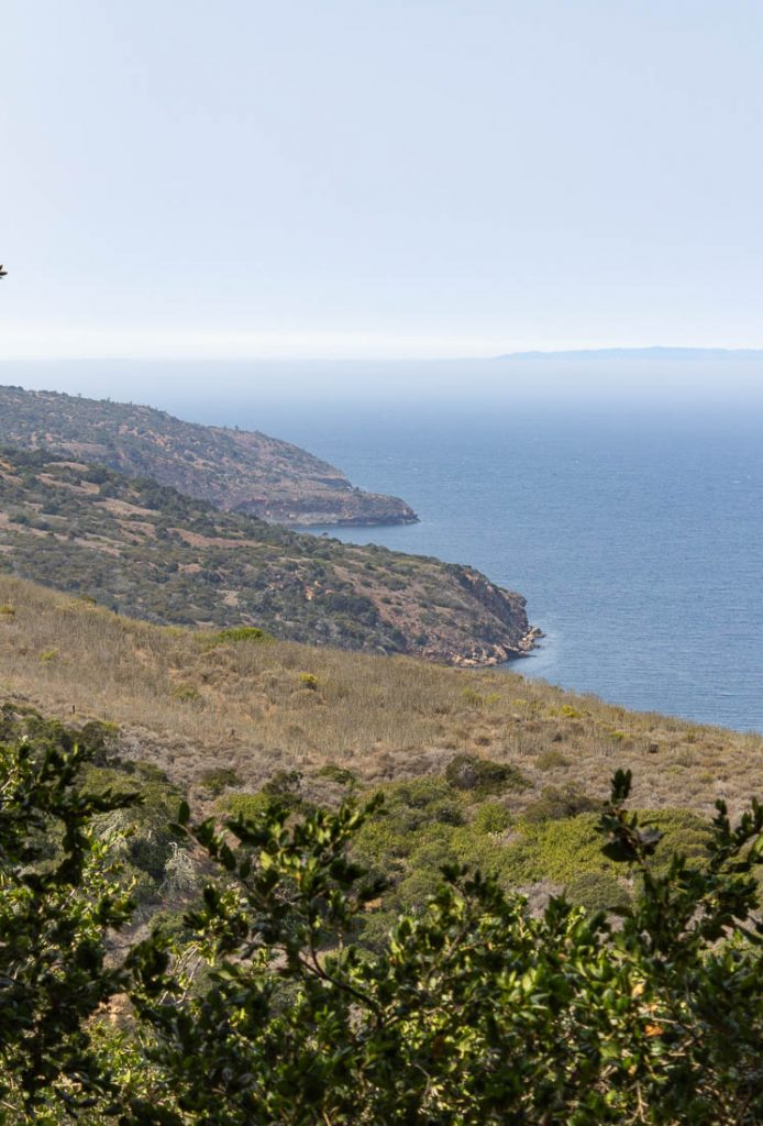 view of ocean and island at Santa Cruz Island at Channel Islands National Park