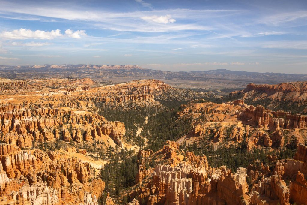 View of the hoodoos with trees and mountains at Bryce Canyon