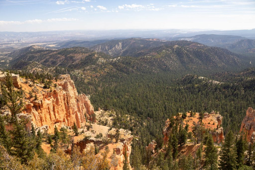 top down view of forest dotting hills with orange hoodoos in the front at Bryce Canyon National Park