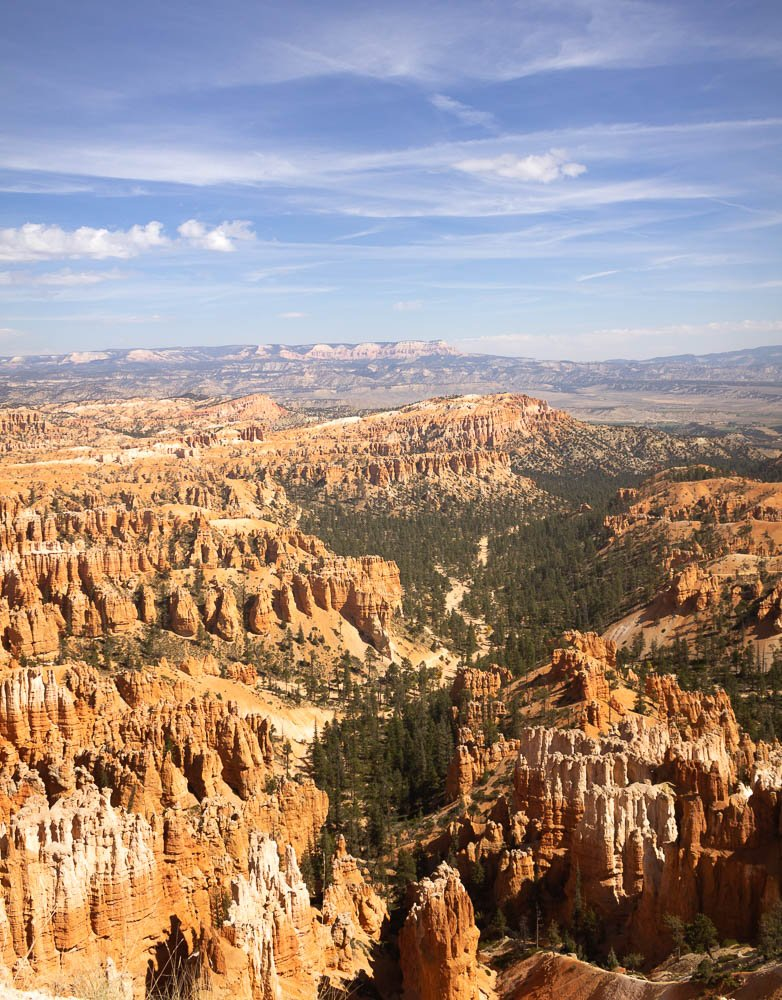 view from Bryce Point at Bryce Canyon National Parks with trees cutting through the middle of the amphitheater