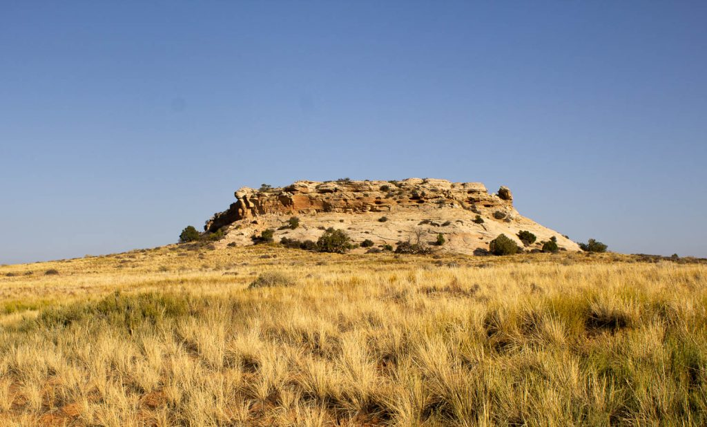 View of Aztec Butte with prairie grass in the front at Canyonlands National Park