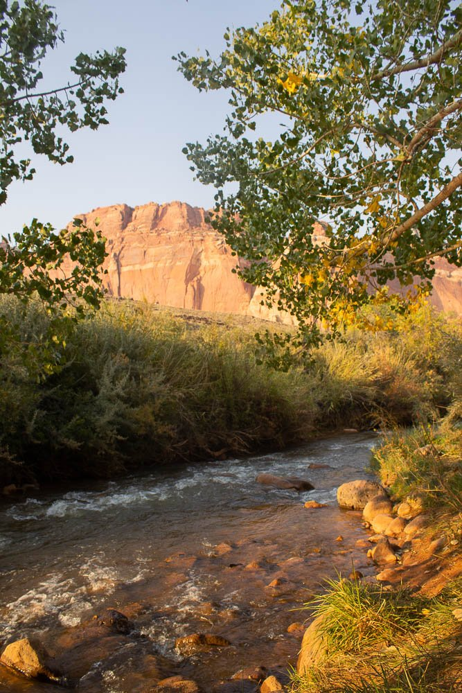 View of the Fremont river up close at Capitol Reef National Park